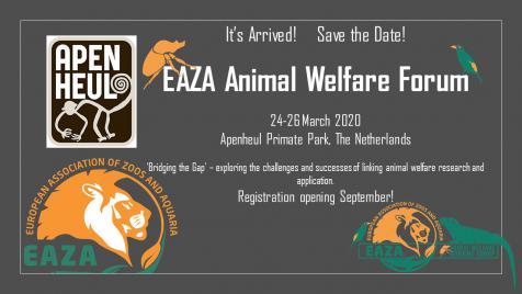 ANIMAL WELFARE » EAZA