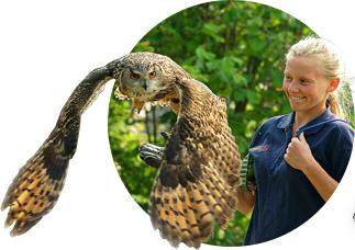 European Association of Zoos and Aquaria » EAZA